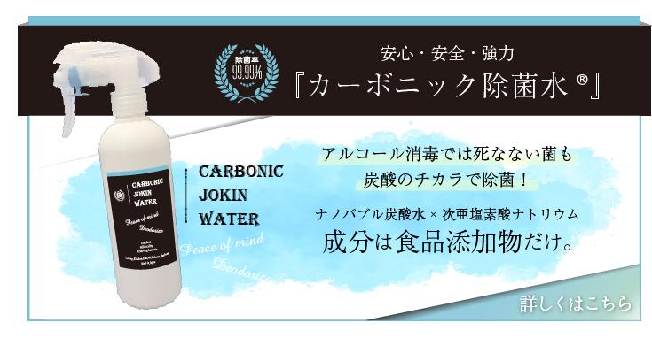 次 亜 塩素 酸 ナトリウム 炭酸 水